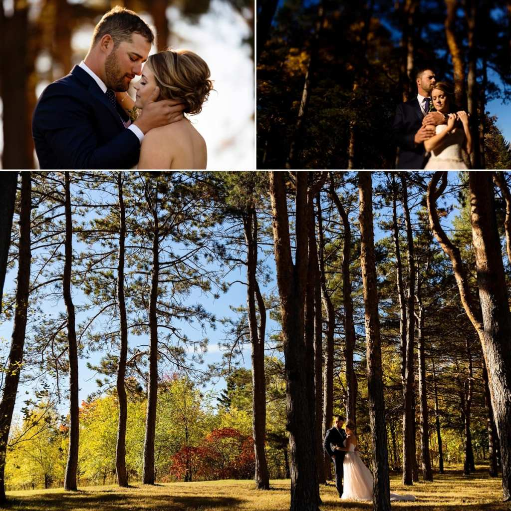 photo collage of groom holding bride's face, bride and groom cuddling in sunshine and bride and groom standing amongst tall pines during Autumnal NAV Centre Cornwall Wedding