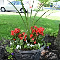 Shade Container Gardens {Curb Appeal Blog Hop - Week 2}