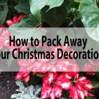 Have The Christmas Decorating Police Showed Up At Your House?