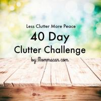 40 Day Clutter Challenge - Clothes and Bathrooms