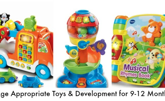 Development Top Baby Toys For Ages 9 12 Months