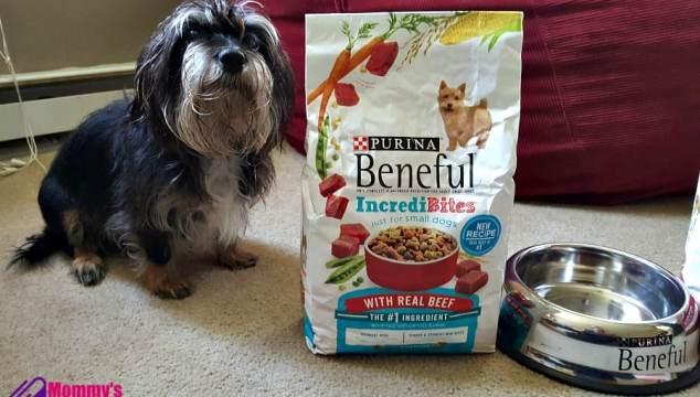 Beneful and Bailey Mae