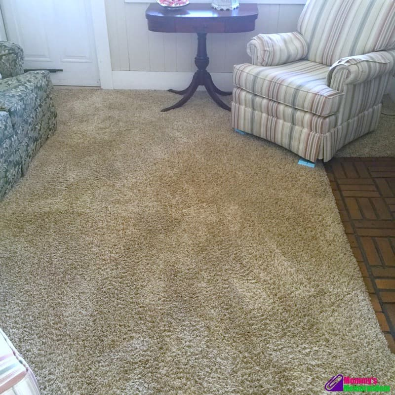 Sears Carpet U0026 Upholstery Cleaning , Burnaby BC , Ourbis