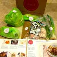 Plated Fresh Food Subscription Review: August 6 Delivery