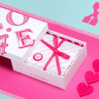 Glossybox FULL February 2015 Spoilers + Very Limited Box Design!