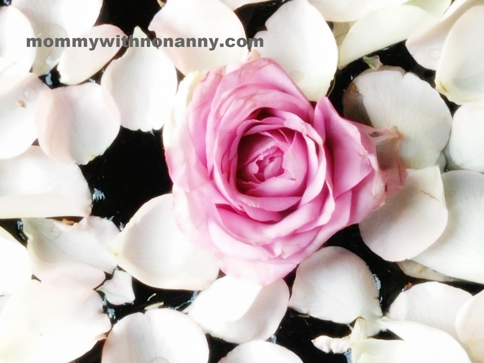 Rose Power
