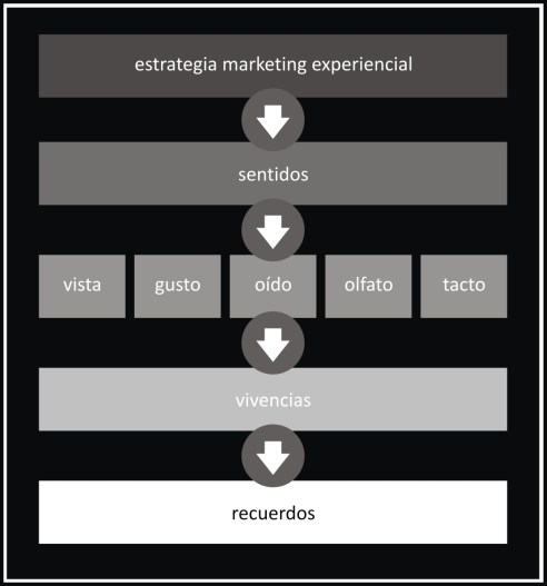 la experiencia como estrategia de marketing