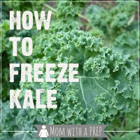 How to Freeze Kale, Raw and Fresh!