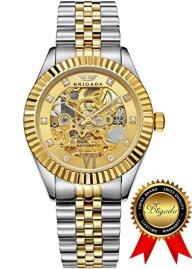 BRIGADA Swiss Watches Luxury Gold Automatic Watches for Men, Nice Mechanical Men's Watches
