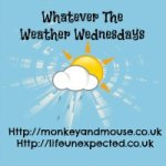 Whatever the Weather #45