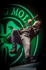 2015-08-16_Flogging_Molly_-_Bild_008.jpg