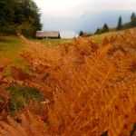 Fall Hiking in Triglav National Park Slovenia:  A Photojourney