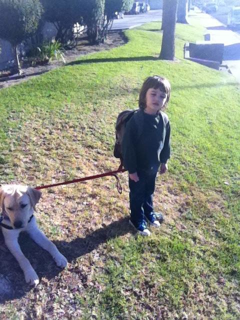 Tethering and the Autism Assistance Dog - Monkey Tail Ranch