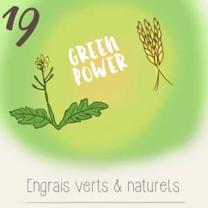 illustration calendrier de l'avent 2015 par mon petit balcon jour 19 - semer de l'engrais vert (moutarde, orge et petit pois) sur un potager de balcon)