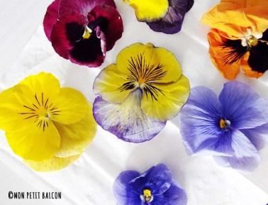 fleurs comestibles pensées violettes de la grande épicerie paris