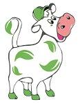 krowa150_kompresja