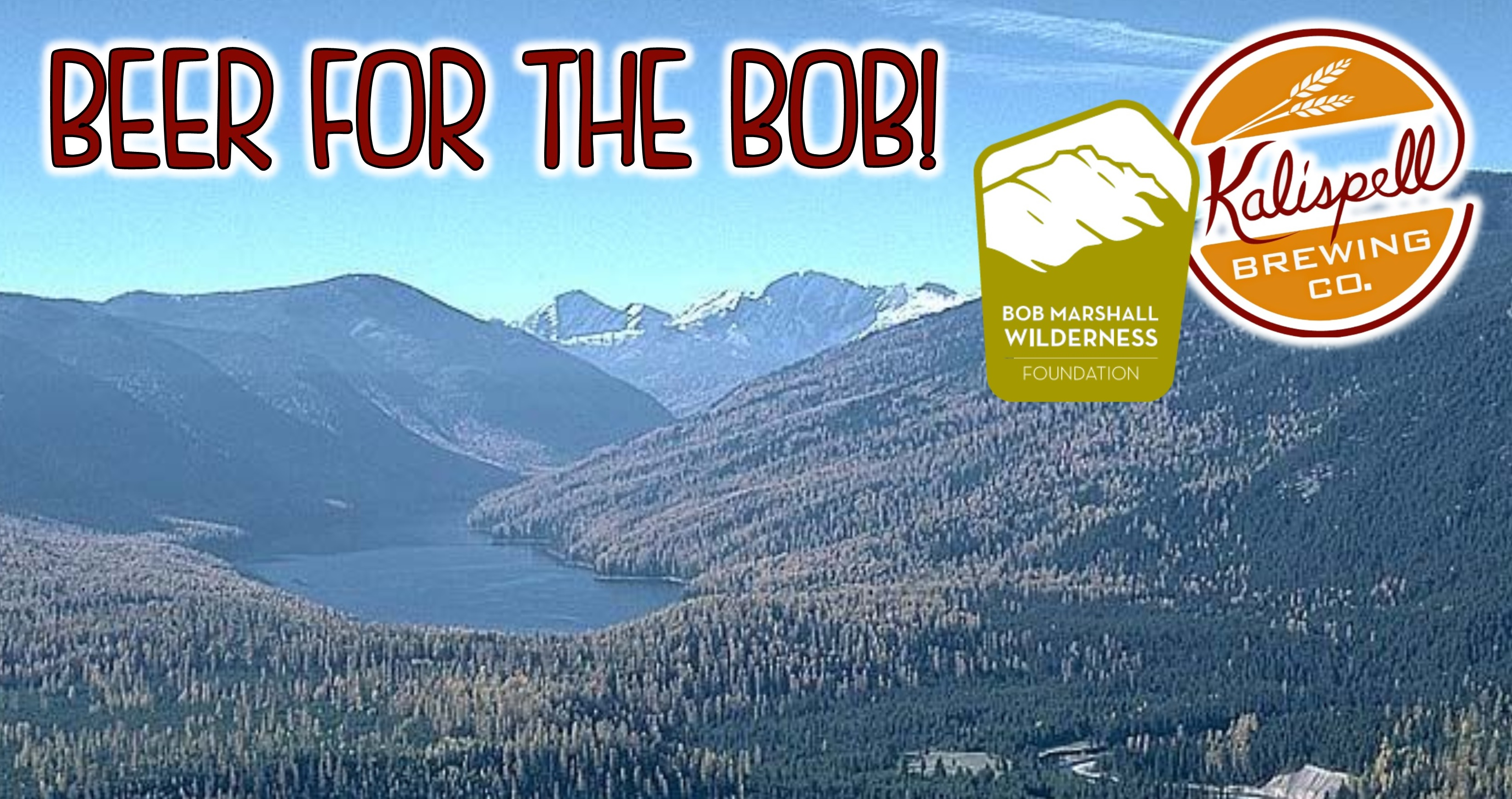 Flying Fish Farmhouse Summer Ale Beer For The Bob A Bob Marshall Wilderness Foundation