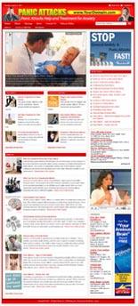 Panic Attacks Niche Website