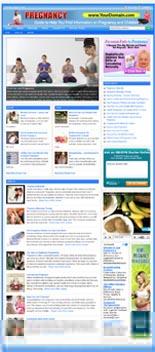Pregnancy Niche Website