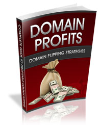 DomainProfits-RestrictedPLR
