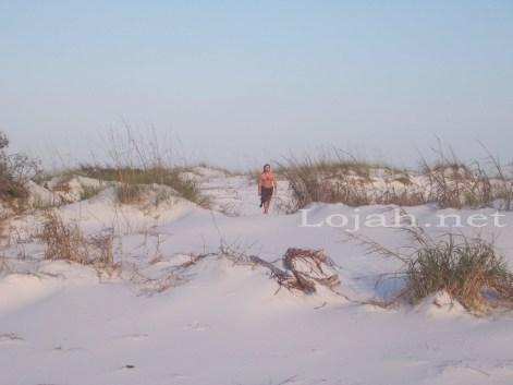 beach_website