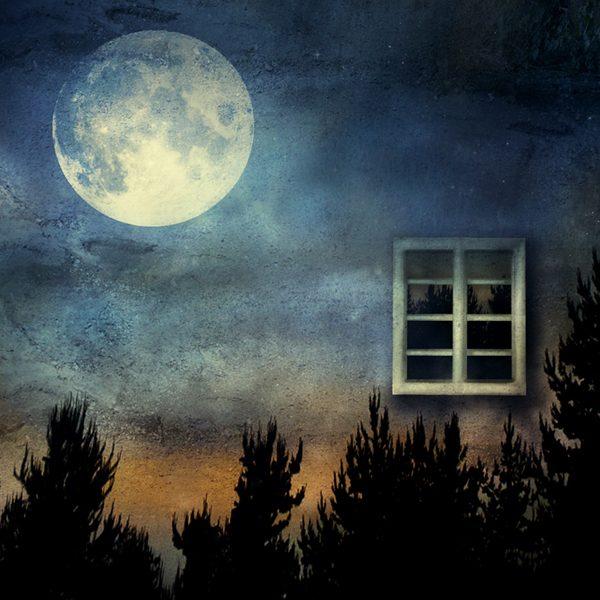 Moon Workshop