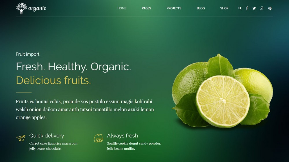WordPress Themes for Organic, Healthy Food, Eco Products  Agro