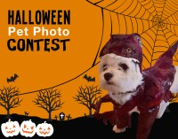 Halloween Costume Contest Flyer