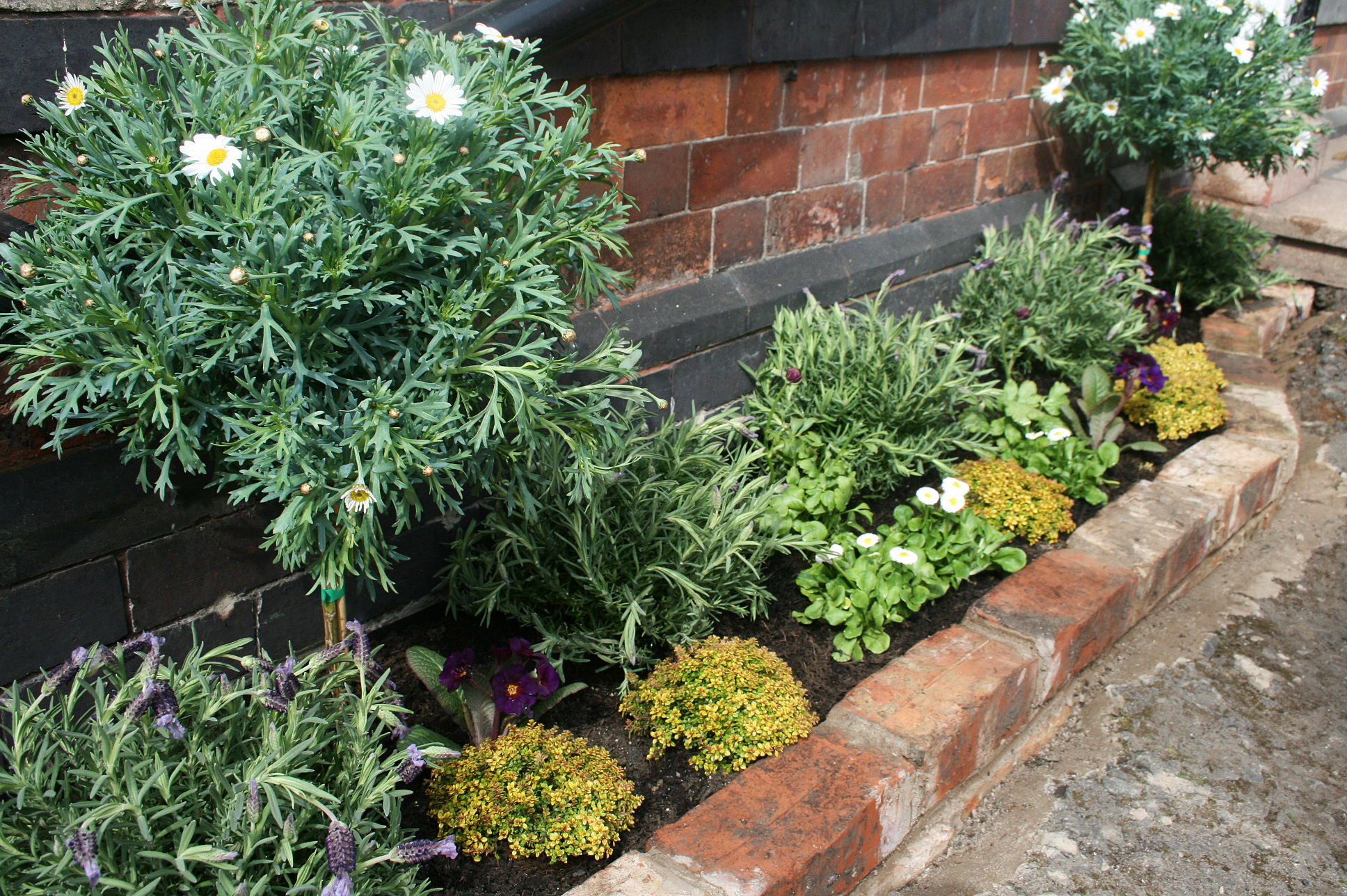 Plant Bed How To Build And Plant A Reclaimed Brick Raised Bed With