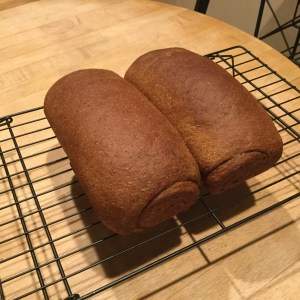Whole wheat bread with molasses