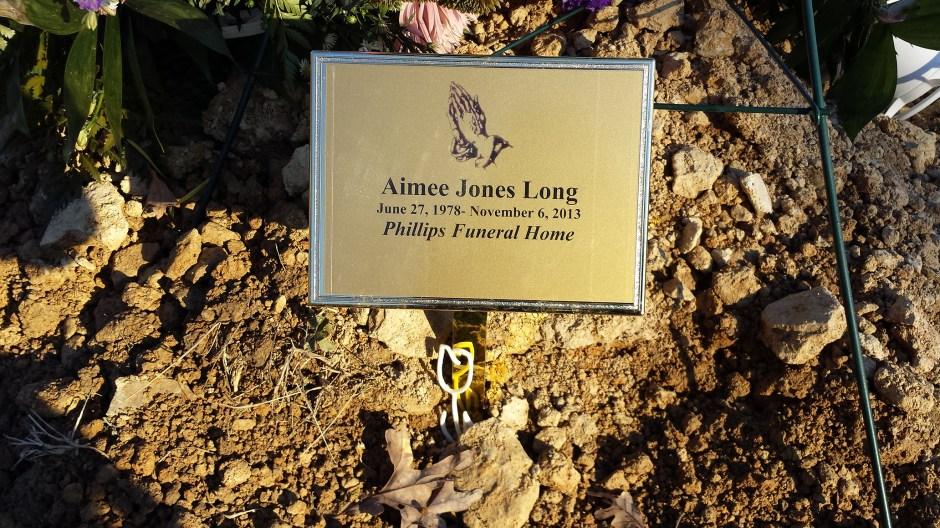 Aimee's tulip