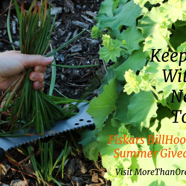 Keep Cool With A New Tool: Fiskars Giveaway