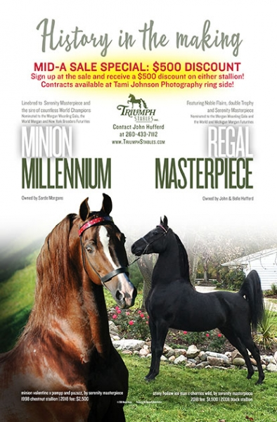 Triumph-Sarde-Mid-A-Catalog2018jpg - horse sales contracts
