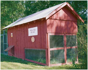 DIY Chicken Coop Plans that are Easy to Build     Free Mammy    s Chicken House