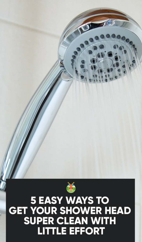 5 Easy Ways To Get Your Shower Head Super Clean With Little Effort
