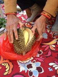 evwc-04-09-joanne-durian