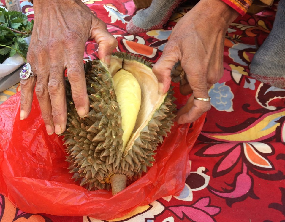 evwc17-04-09-joanne-durian