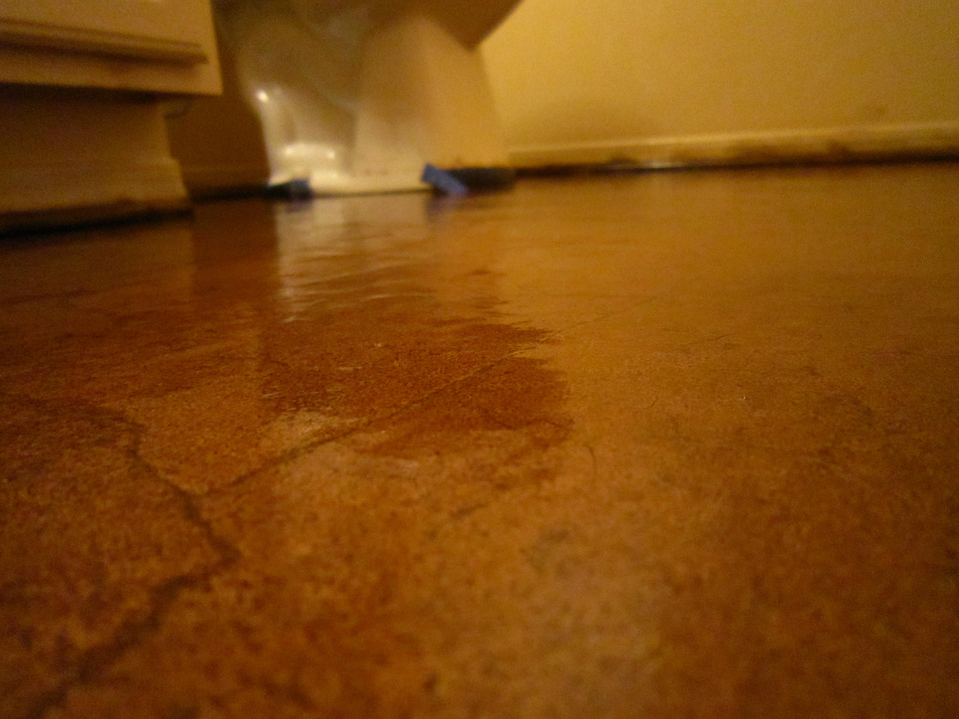 Diy Deck Flooring Diy Stained Brown Paper Floor Awesomeness Under 30 Do