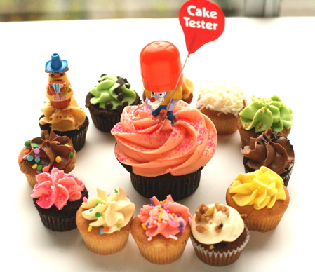 captain-foushad-cake-tester_461989384_o