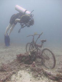 Bike inspector