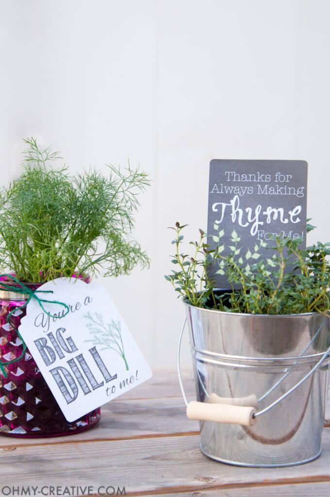 mother's day gift ideas, kitchen herb ideas, mother's day gift ideas