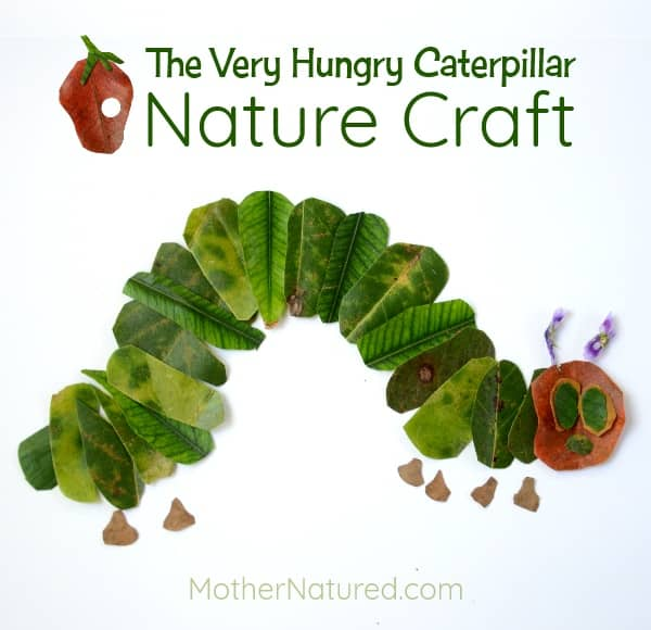 The Very Hungry Caterpillar Nature Craft - Mother Natured