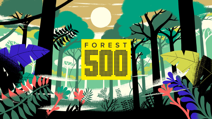 Forest500_001