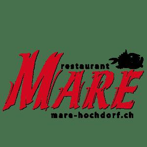 Mare Hochdorf Bronze Partner_50x50-01