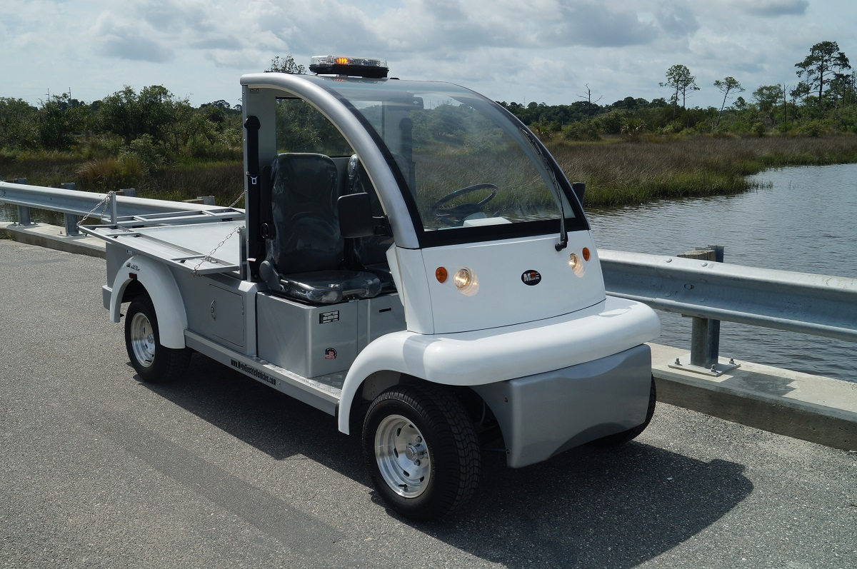 7 Seater Electric Car Vehicle