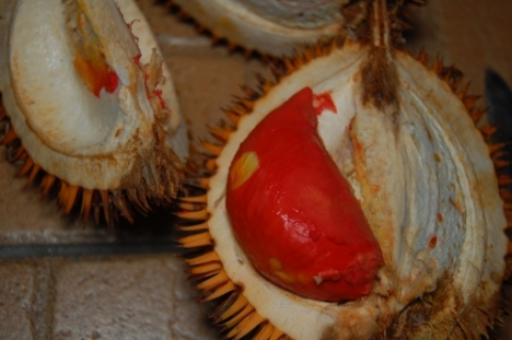 The close up of the red durian.