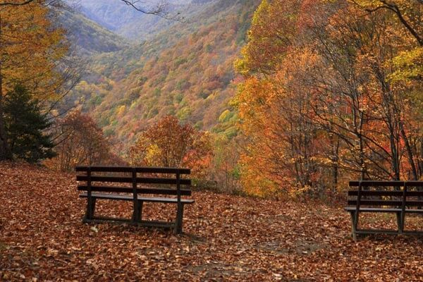 Fall Wooded Wallpaper Fall Scenery Mountain Creek Cabins