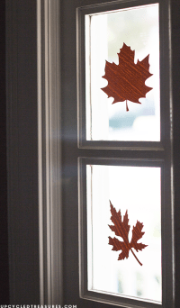 Fall Window Decals with Contact Paper | MountainModernLife.com
