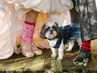 wedding socks | JoPhoto |Townsend Tennessee