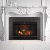 Gas Fireplace Inserts - Heat & Glo   Mountain West Sales